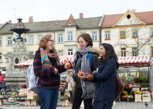 Study Abroad in Germany Strategic Plan