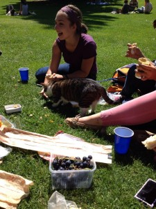 Students in a park having a picnic with a dog
