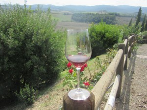 A glass of wine with a vineyard in the background