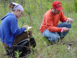 Students gather data at the arb