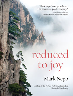 "Book Cover of ""Reduced to Joy"""