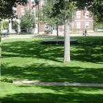 "K Quad Goes ""Green"" for Commencement"
