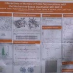 Student chemistry research poster