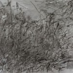 Artwork by Julie Mehretu