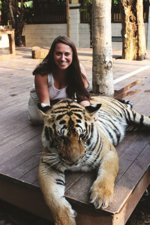 Foreign Study Petting Tigers