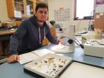 NSF Graduate Fellow uses a microscope at Dow Science Center