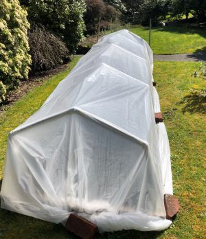 Megan Earth Day Cold Frame Hoop House