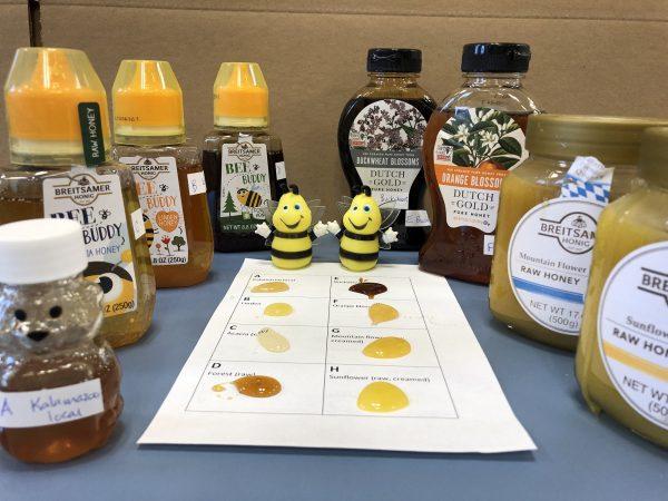 Types of honey surround a taste test