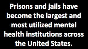 """Text reading, """"Prisons and jails have become the largest and most utilized mental health institutions across the US"""""""
