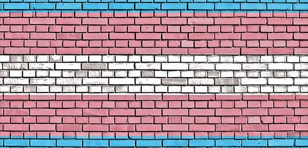 transgender flag colors on illustrated bricks.