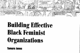 "article title ""Building Effective Black Feminist Organizations"""