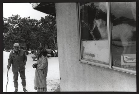 Black and white photograph of two figures outside and goat inside the window of a house