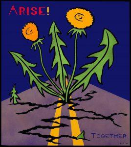 Dandelions growing through cracks in concrete: Arise!