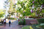 Spring 2019 Dean's List Campus