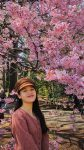 Japanese Speech Contest Participant Uyen Trinh next to a cherry blossom in Tokyo_fb