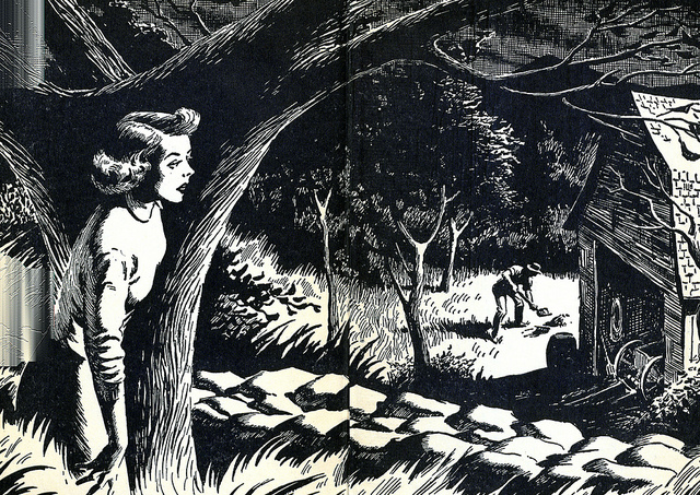 Nancy Drew illustrated by End Papers
