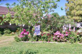 Angel Marie's Tree HQ